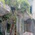 Γ. Σούρλας: Να αξιοποιηθεί το σπίτι της Σ. Βέμπο στο Βόλο...
